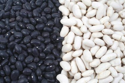 black-beans-and-white-beans