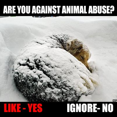 abusen