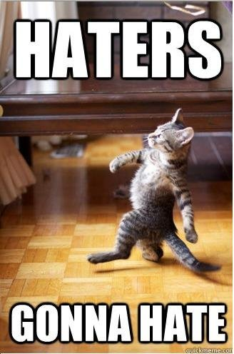 HATERS+GONNA+HATE_05d460_3317189