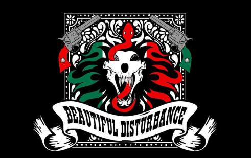 beautifuldisturbance24