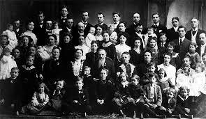 family 245